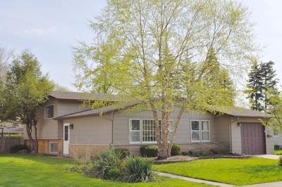 Mount Prospect Single Family Home For Sale: 907 East Alder Lane