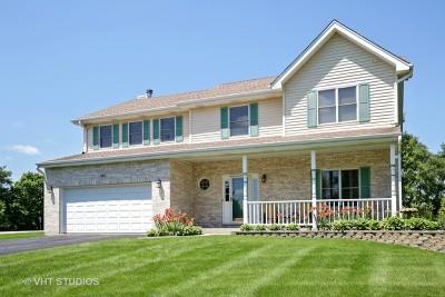 Sleepy Hollow Single Family Home For Sale: 694 Deer Lane