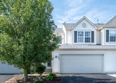 Minooka, Channahon Condo/Townhouse For Sale: 1058 Clover Drive