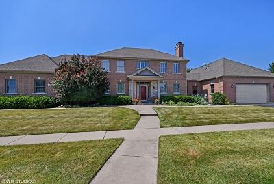 St. Charles Single Family Home For Sale: 40w160 Carl Sandburg Road