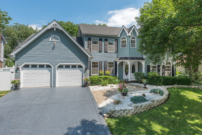 Naperville Single Family Home For Sale: 912 Piedmont Circle