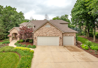 Lemont Single Family Home For Sale: 13002 Spruce Hill Court