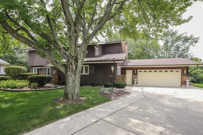 Downers Grove Single Family Home For Sale: 3636 Quince Court