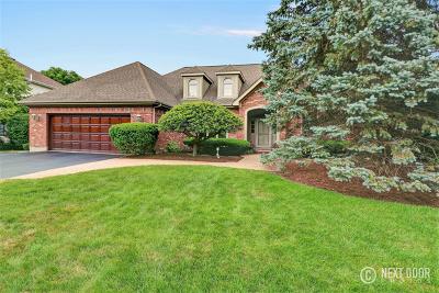Geneva Single Family Home For Sale: 1521 Eagle Brook Drive