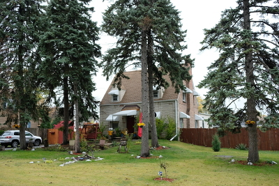 Melrose Park Single Family Home For Sale: 10616 Nevada Avenue