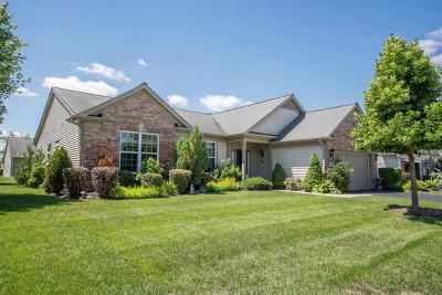 Elgin Single Family Home For Sale: 2451 Sandy Stream Lane