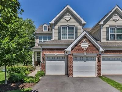 Elgin Condo/Townhouse For Sale: 1203 Falcon Ridge Drive