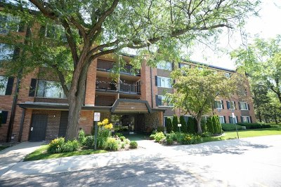 Arlington Heights Condo/Townhouse Re-Activated: 1207 South Old Wilke Road #306