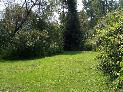Lockport Residential Lots & Land For Sale: 16701 West 140th Street