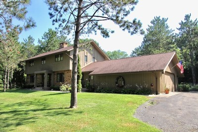 Mc Henry County Single Family Home For Sale: 8204 Breckenridge Court
