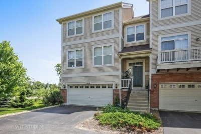 Grayslake Condo/Townhouse For Sale: 1858 Watercolor Place