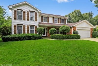 Libertyville Single Family Home For Sale: 247 Nita Lane