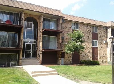 Hoffman Estates Condo/Townhouse For Sale: 1025 Higgins Quarters Drive #312