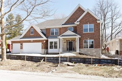 Plainfield Single Family Home For Sale: 11635 Millennium Parkway