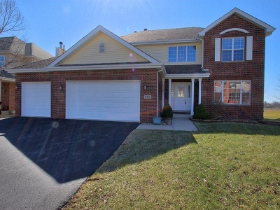 Beecher Single Family Home For Sale: 226 Poplar Lane