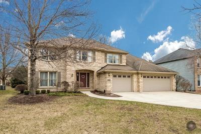 Naperville Single Family Home For Sale: 2808 Spinner Court