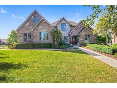 Orland Park Single Family Home For Sale: 14230 South 87th Place