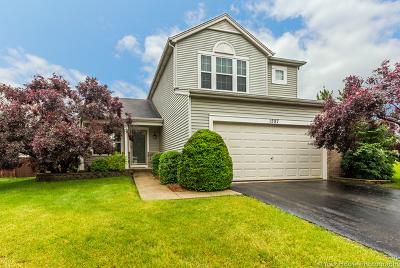Romeoville Single Family Home For Sale: 1587 Arborwood Circle