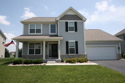 Joliet Single Family Home For Sale: 1004 Hudson Drive