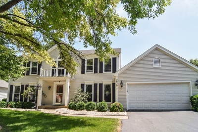Wheaton Single Family Home For Sale: 2039 Richton Drive