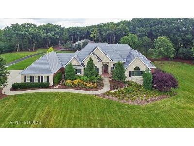 Homer Glen Single Family Home For Sale: 16501 South Parker Road