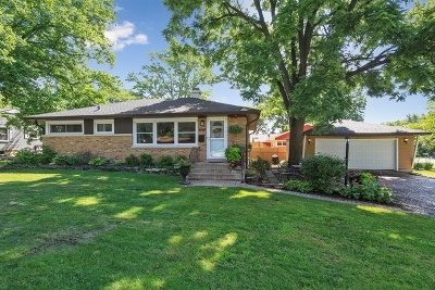 Downers Grove Single Family Home For Sale: 4943 Woodward Avenue