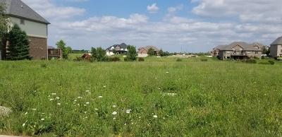 Homer Glen Residential Lots & Land For Sale: 15637 Jeanne Lane