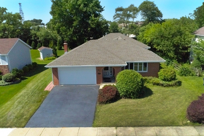 Lake Zurich Single Family Home For Sale: 256 Washo Drive