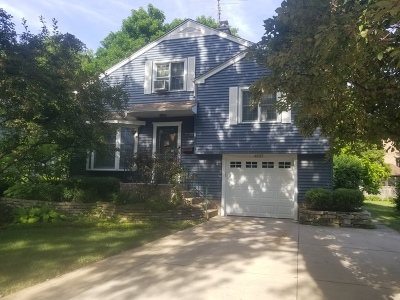 Downers Grove Single Family Home For Sale: 4637 Main Street