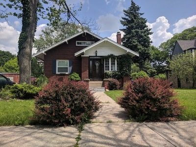 Elmhurst Single Family Home For Sale: 295 North Elm Avenue