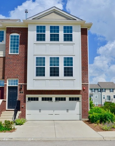 Schaumburg Condo/Townhouse For Sale: 51 Kevin Andrew Drive