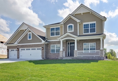 Orland Park Single Family Home For Sale: 13869 Creek Crossing Drive