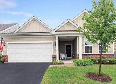 Shorewood Single Family Home For Sale: 527 Pleasant Drive