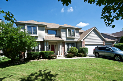 Oswego Single Family Home For Sale: 523 Waubonsee Circle