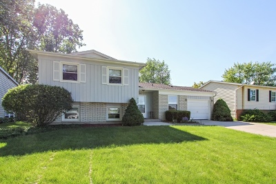 Buffalo Grove Single Family Home For Sale: 754 Golfview Terrace