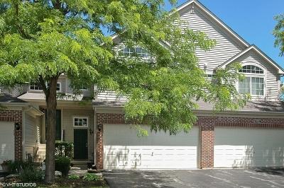 Carpentersville Condo/Townhouse For Sale: 3617 Roanoke Avenue #2