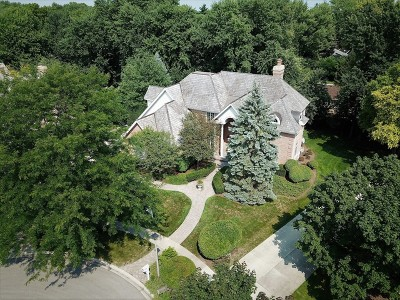 Libertyville Single Family Home For Sale: 1610 Mulberry Drive