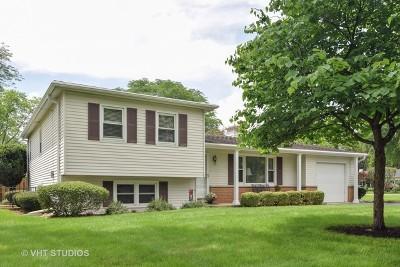 Glen Ellyn Single Family Home For Sale: 3s430 Osage Drive