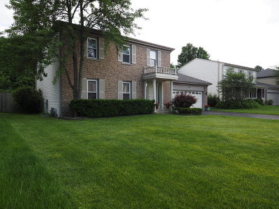 Roselle Single Family Home For Sale: 1165 Colony Lane