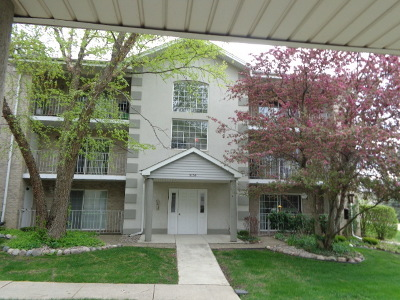 Hickory Hills  Condo/Townhouse For Sale: 9130 West 95th Street #3A