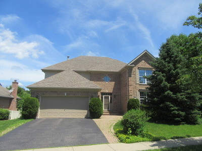 Palatine Single Family Home For Sale: 954 West Aspen Court