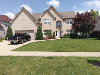 Plainfield Single Family Home For Sale: 25903 Meadowland Circle