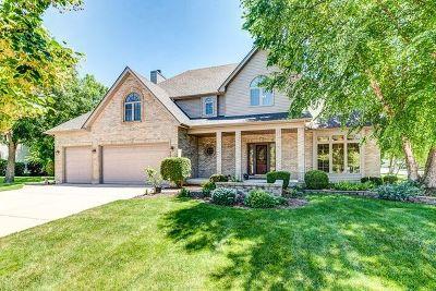 Oswego Single Family Home For Sale: 333 Ash Grove Lane