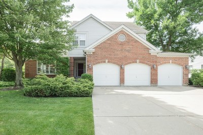 Buffalo Grove Single Family Home For Sale: 2938 Whispering Oaks Drive