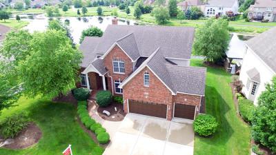 Naperville Single Family Home For Sale: 2816 Mistflower Lane