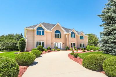 Naperville IL Single Family Home For Sale: $835,000