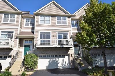 Grayslake Condo/Townhouse For Sale: 592 Shoreline Drive