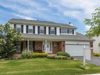 Carol Stream Single Family Home For Sale: 721 Warwick Drive