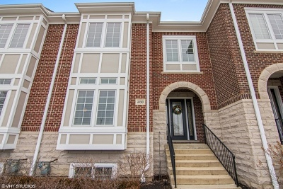 Arlington Heights Condo/Townhouse For Sale: 1430 East Northwest Highway