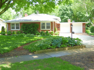 Palatine Single Family Home For Sale: 357 North Macarthur Drive